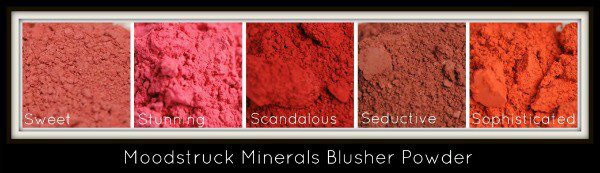 new younique make up products blusher colors